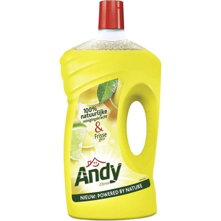 Andy Allesreiniger citroen fris