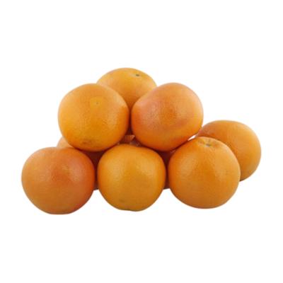 Huismerk Handsinaasappelen