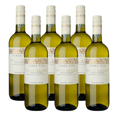 Terra Viva 6 x Organic Pinot Grigio