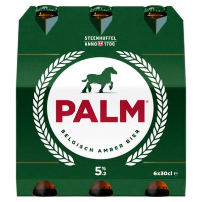 Palm Amber bier 6pack
