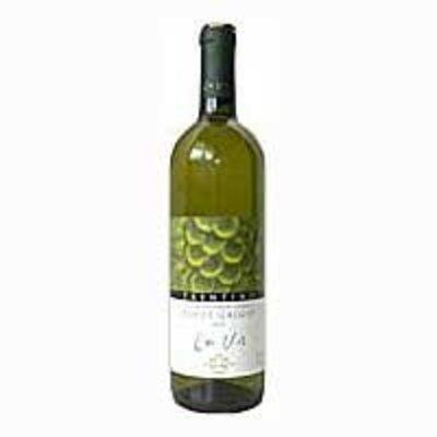 Lavis Chardonnay
