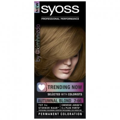 Syoss Color 50ml 7-66 dark ash bnl