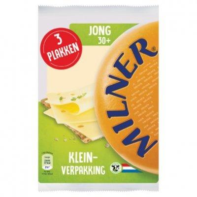 Milner Jong
