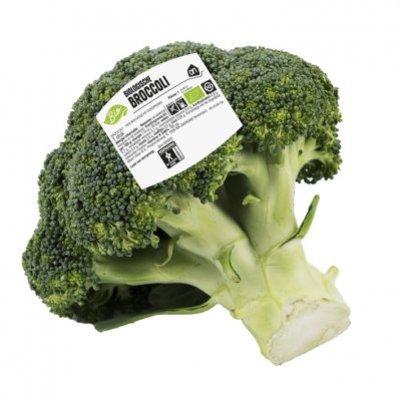 AH Biologische broccoli